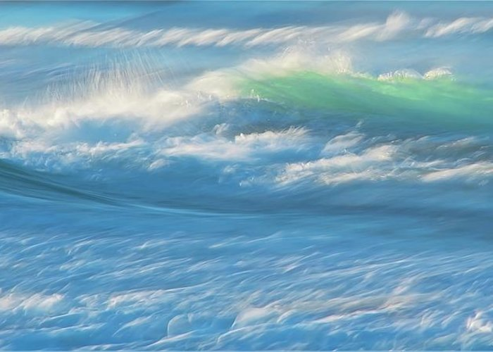 Nature Greeting Card featuring the photograph Light Wave at Asilomar, Pacific Grove, California by Zayne Diamond Photographic