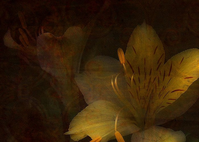 Mixed Media Greeting Card featuring the photograph Lilies II by Bonnie Bruno