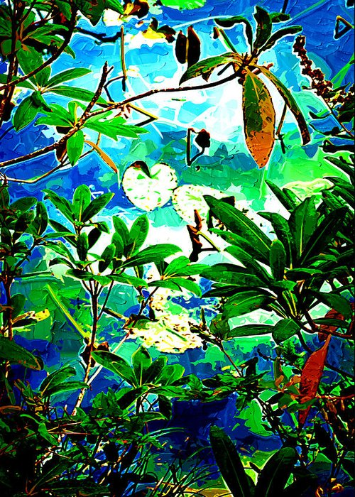 Leaves Greeting Card featuring the photograph Lilly Pods by Dale Stillman