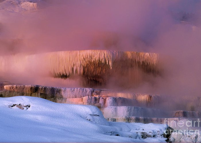 North America Greeting Card featuring the photograph Limestone Artwork Minerva Springs Yellowstone National Park by Dave Welling