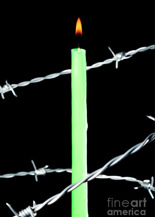 Barbed Wire Greeting Card featuring the photograph Lit Candle Surrounded By Barbed Wire by Sami Sarkis
