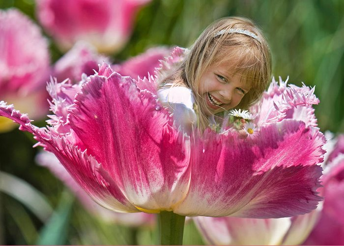 Tulip Greeting Card featuring the photograph Little Dutch Girl by Maria Dryfhout