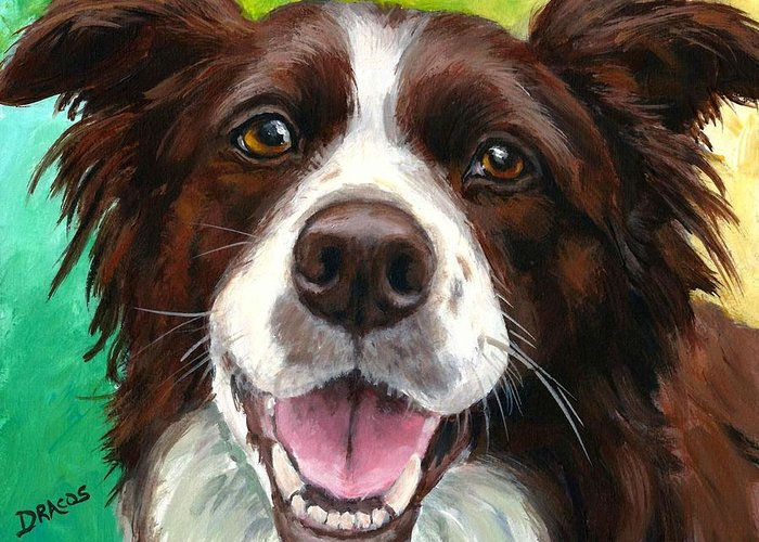 Border Collie Greeting Card featuring the painting Liver And White Border Collie by Dottie Dracos