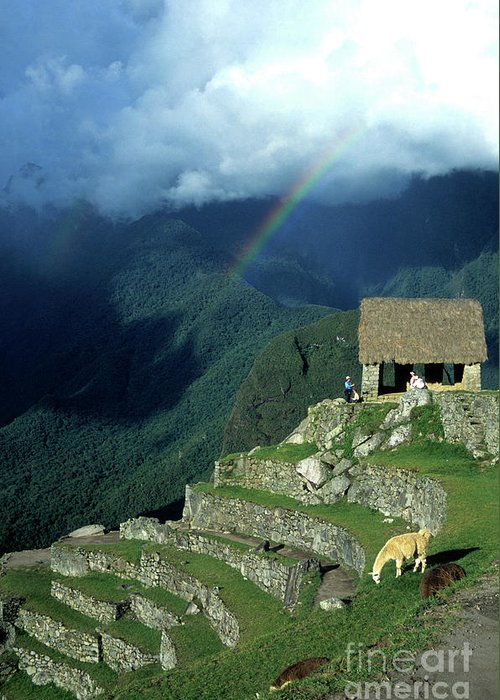 Machu Picchu Greeting Card featuring the photograph Llama And Rainbow At Machu Picchu by James Brunker