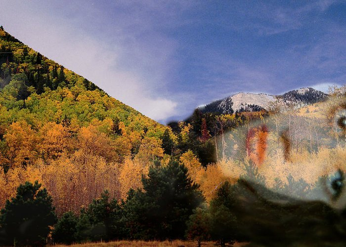 Lockett Meadow Greeting Card featuring the photograph Lockett Meadow Looks Back by Richard Henne