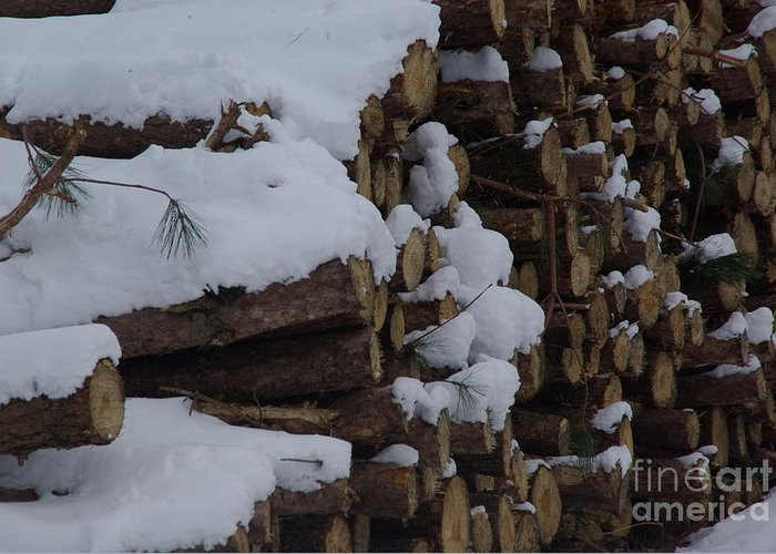 Snow Greeting Card featuring the photograph Log Row by Margaret Dahms