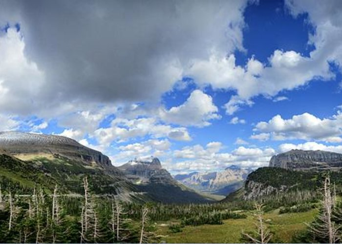 Glacier National Park Greeting Card featuring the photograph Logan Pass Panorama - Glacier National Park by Bruce Lemons