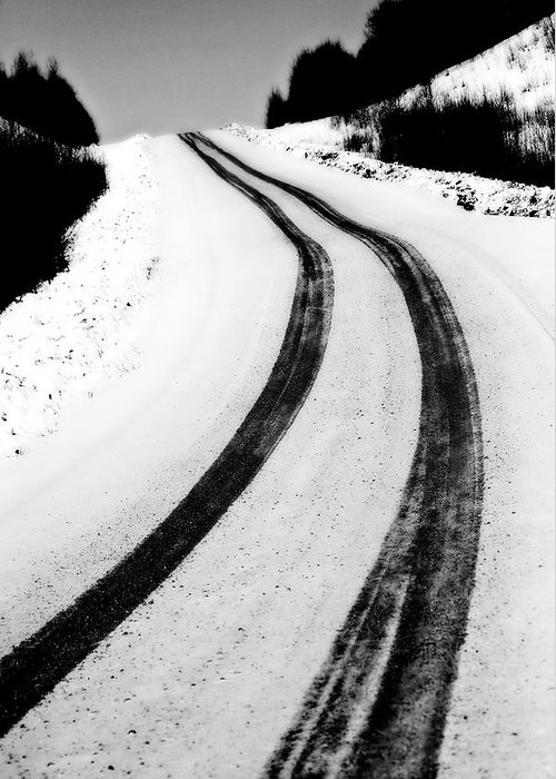 Snow Greeting Card featuring the digital art Logging Road In Winter by Mark Duffy