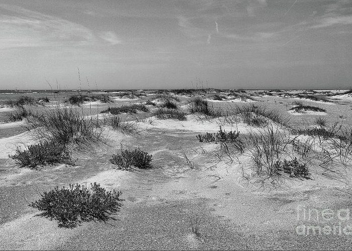 Beach Greeting Card featuring the photograph Lonely Beach by John Wijsman