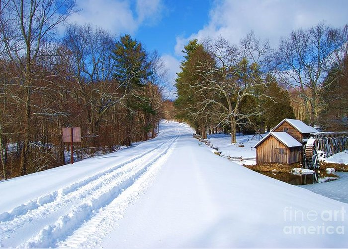 Snow Greeting Card featuring the photograph Lonely by Eric Liller