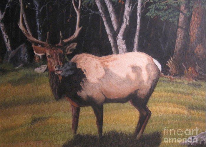 Wildlife Greeting Card featuring the pastel Loner by John Huntsman
