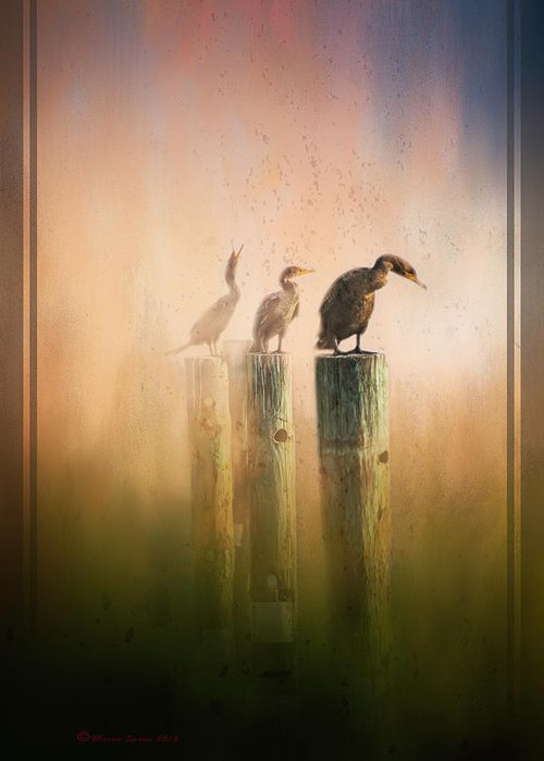 Cormorant Greeting Cards