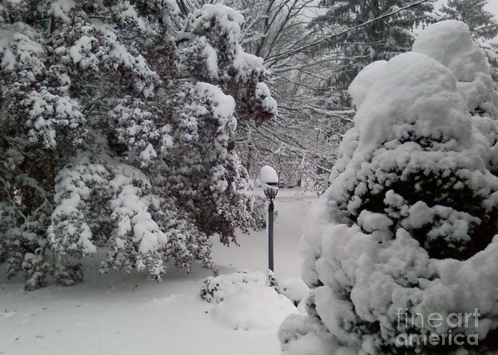 First Snow Greeting Card featuring the photograph Looking Out My Front Door by Carol Wisniewski
