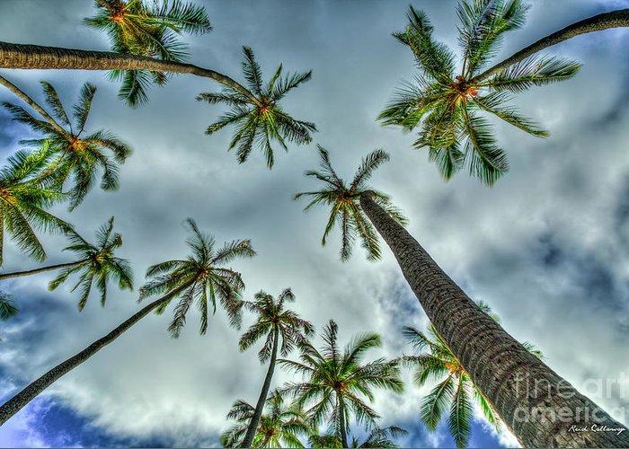 Reid Callaway Looking Up Greeting Card featuring the photograph Looking Up The Hawaiian Palm Tree Hawaii Collection Art by Reid Callaway
