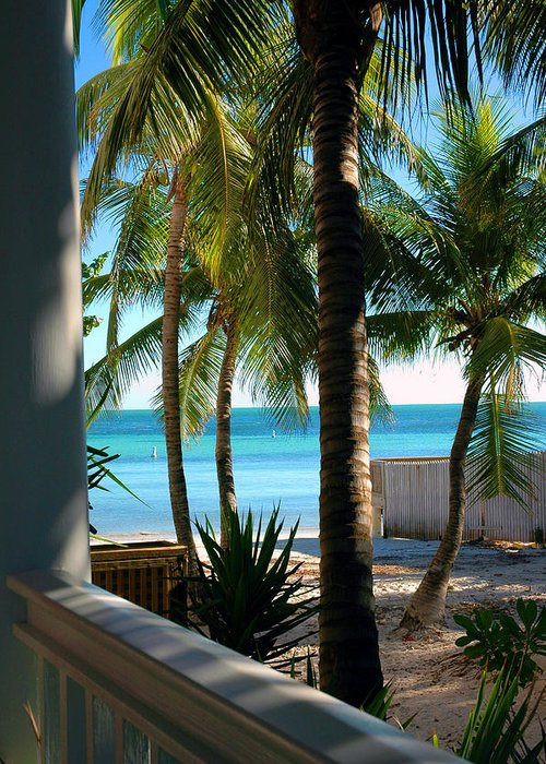 Photos Of Key West Greeting Card featuring the photograph Louie's Backyard by Susanne Van Hulst