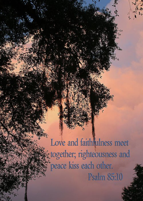 Scripture Greeting Card featuring the photograph Louisiana Moss In Sunset Ps.85 V 10 by Linda Phelps