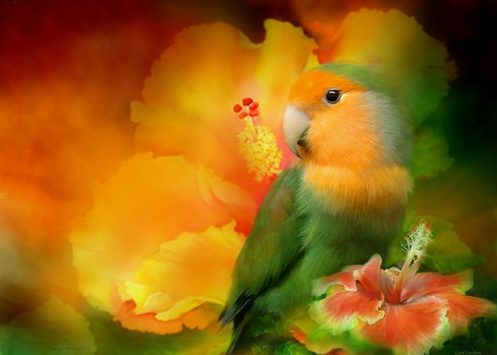 Lovebird Greeting Card featuring the mixed media Love Among The Hibiscus by Carol Cavalaris