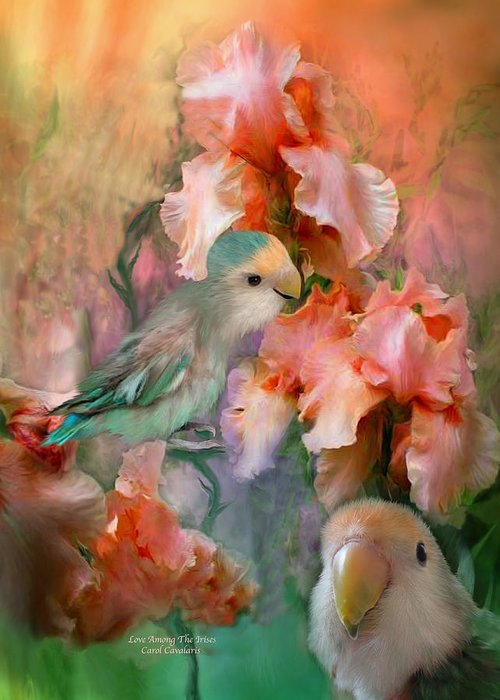 Lovebird Greeting Cards