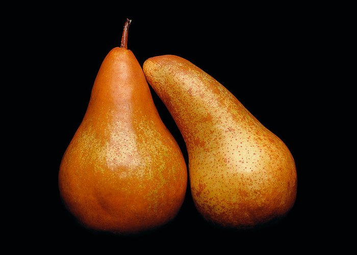 Pear Greeting Card featuring the photograph Loving Pair by Gary Cloud