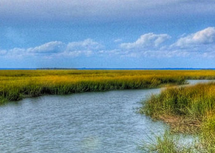 Beaufort Greeting Card featuring the photograph Low Country Vista by E R Smith
