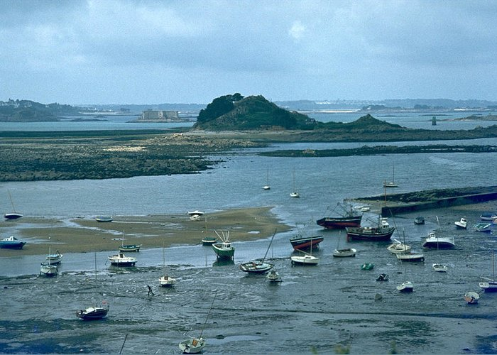 Low Tide Greeting Card featuring the photograph Low Tide by Flavia Westerwelle