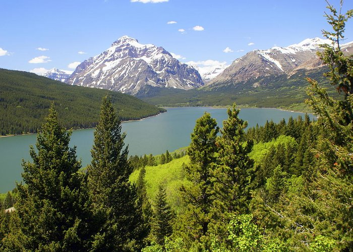 Two Medicine Lake Greeting Card featuring the photograph Lower Two Medicine Lake by Marty Koch