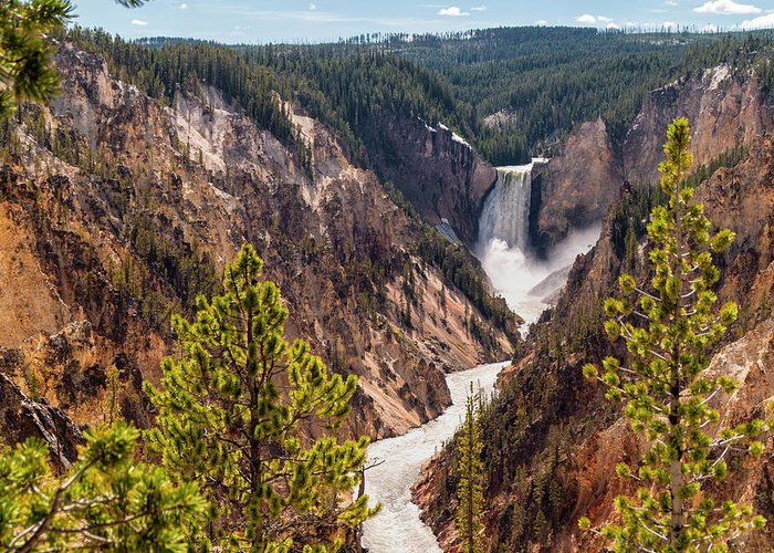 Grand Canyon Of The Yellowstone Stationery
