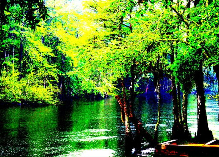 Water Greeting Card featuring the photograph Lumber River II by RJ Walker
