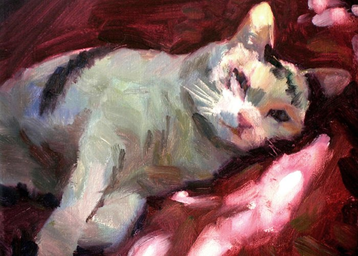 Cat Greeting Card featuring the painting Luna In The Sun by Merle Keller