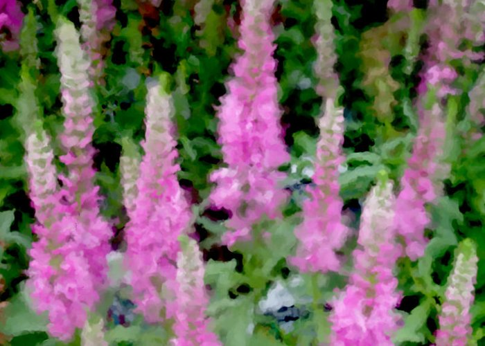 Lupine Greeting Card featuring the digital art Lupine Impression by Michelle BarlondSmith
