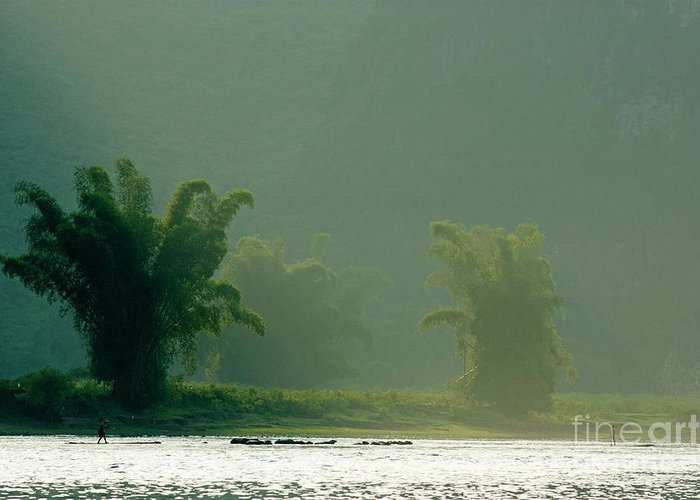 Asia Greeting Card featuring the photograph Lush Bamboo Trees On The Banks Of The Li Jiang River In Yangshuo by Sami Sarkis