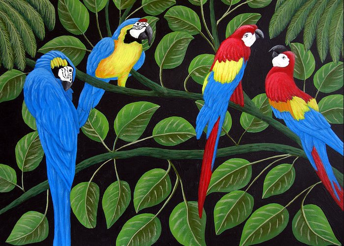 Birds Paintings Greeting Card featuring the painting Macaws by Frederic Kohli