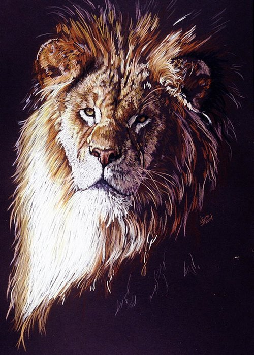 Lion Greeting Card featuring the drawing Maestro by Barbara Keith