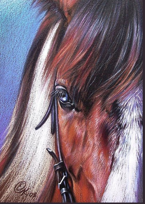 Horse Animal Portrait Drawing Art Greeting Card featuring the drawing Magnificent Paint by Elena Kolotusha