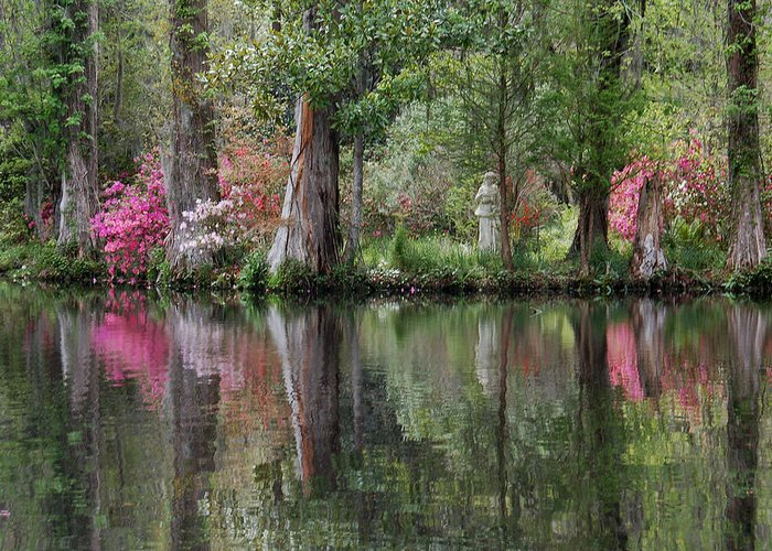 Magnolia Plantation Greeting Card featuring the photograph Magnolia Plantation Gardens Series Iv by Suzanne Gaff