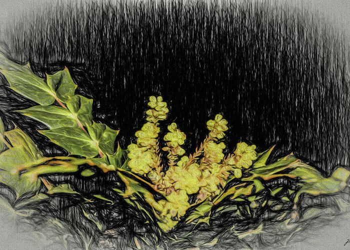 Plants Greeting Card featuring the photograph Mahonia Blossom by Thomas Fields