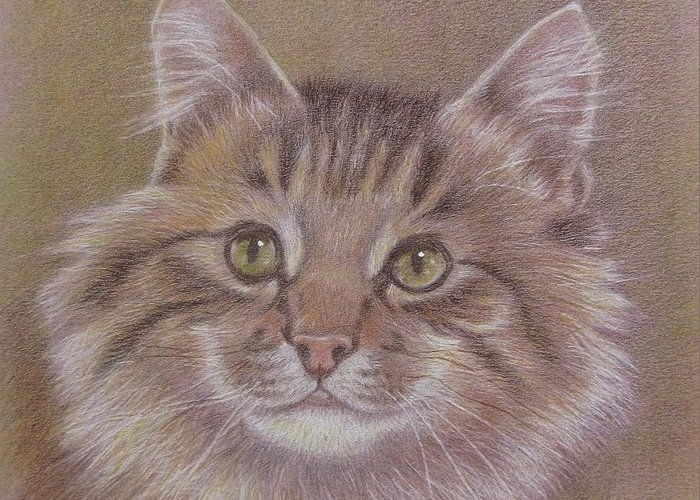 Greeting Card featuring the painting Maine Coon Cat by Dorothy Coatsworth