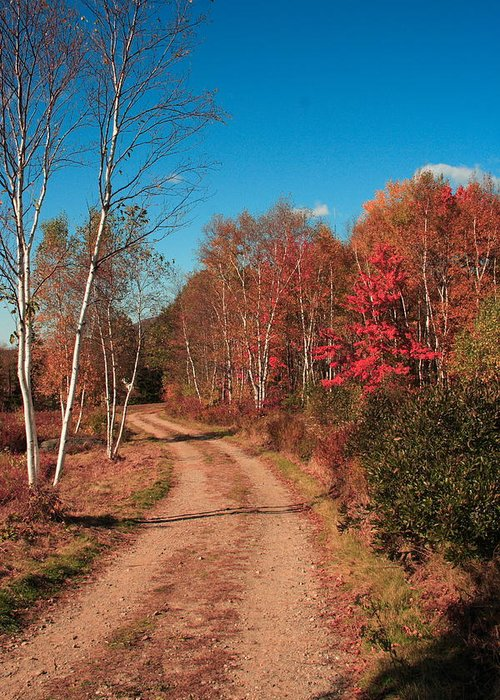 Landscape Greeting Card featuring the photograph Maine October by Doug Mills