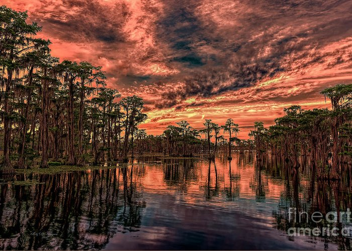 Sunsets Greeting Card featuring the photograph Majestic Cypress Paradise Sunset by Bill And Deb Hayes