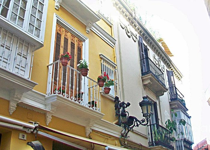 Malaga Greeting Card featuring the photograph Malaga-2010-20 by Rezzan Erguvan-Onal