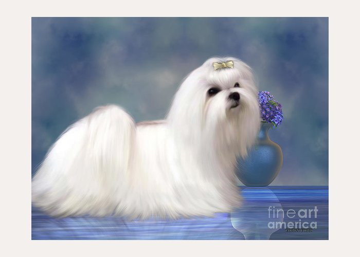 Maltese Greeting Card featuring the painting Maltese Dog by Corey Ford