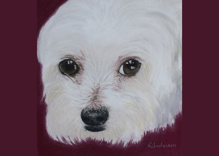 Maltese Greeting Card featuring the pastel Maltese Terrier by Louise Andersen