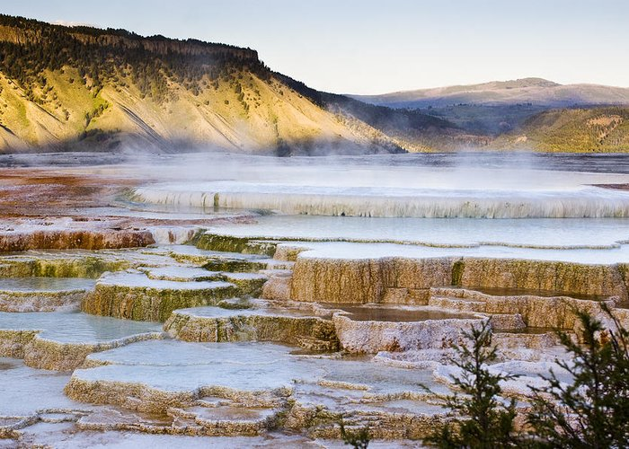 Chad Davis Greeting Card featuring the photograph Mammoth Hot Springs by Chad Davis