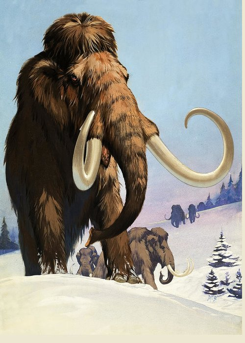Mammoth Greeting Cards