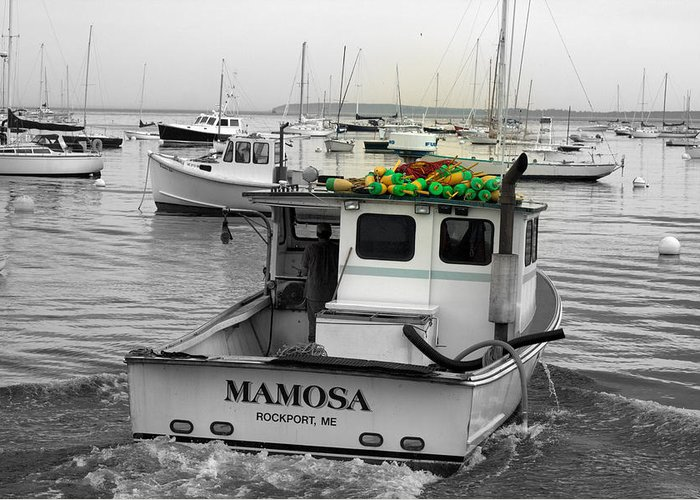 Seascape Greeting Card featuring the photograph Mamosa by Doug Mills