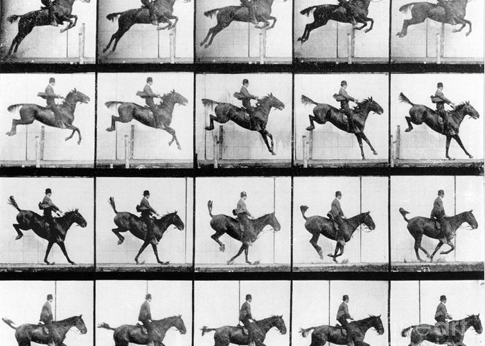 Muybridge Greeting Card featuring the photograph Man And Horse Jumping by Eadweard Muybridge