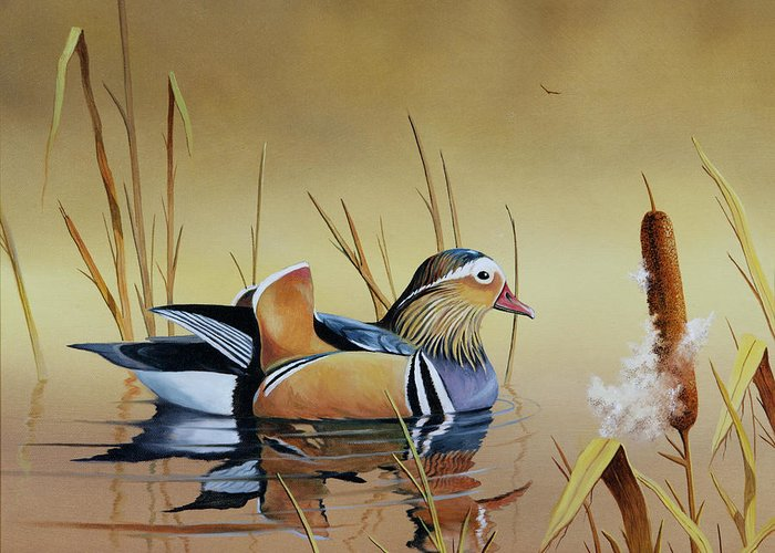 Duck Greeting Card featuring the painting Mandarin Duck by Don Griffiths