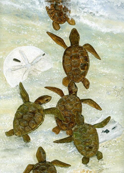Turtles Greeting Card featuring the painting March To The Sea by Kevin Brant