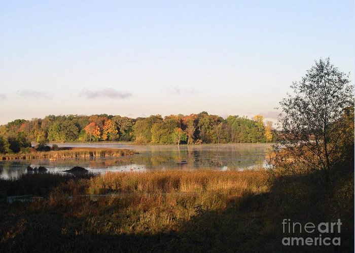 Marsh Greeting Card featuring the photograph Marsh Morning by Mendy Pedersen