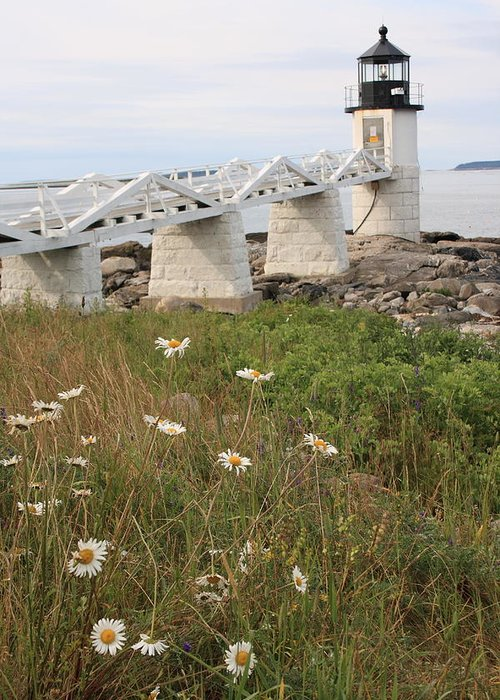Seascape Greeting Card featuring the photograph Marshall Point Daisies 2 by Doug Mills